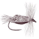 Goddard caddis, tied by Markus Hoffman